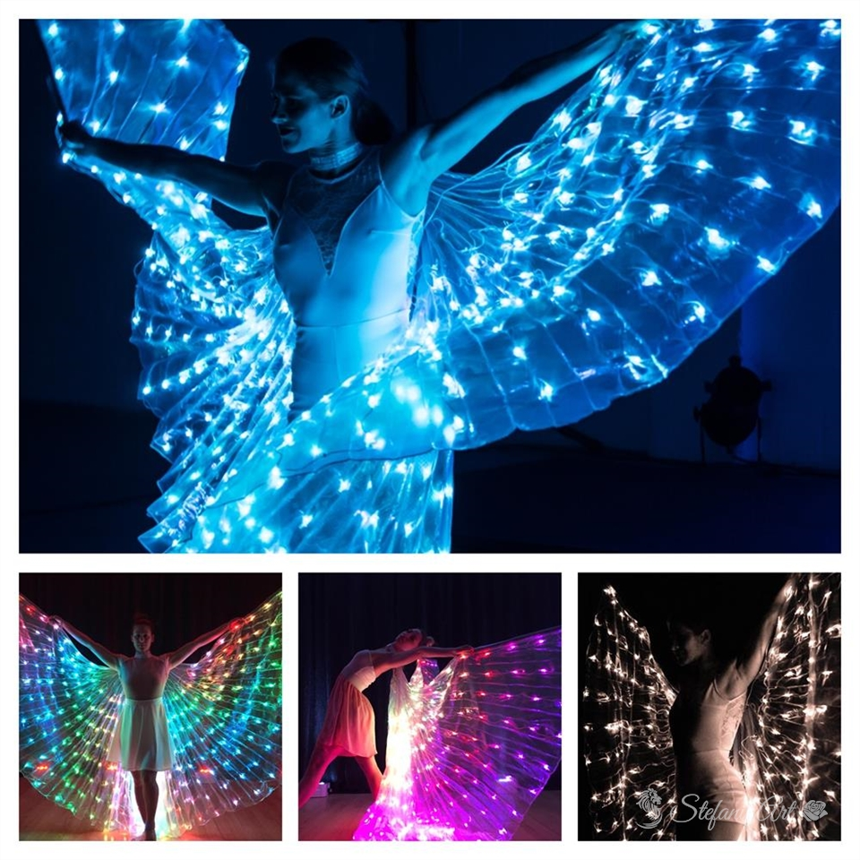 Wings of Leds
